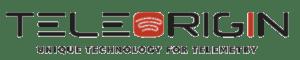 Teleorigin Logo